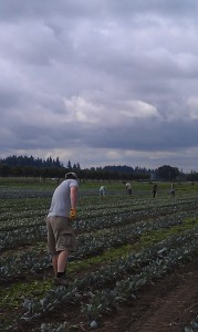 Community Garden near Newberg